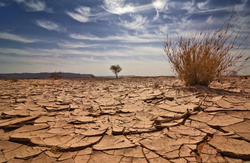 Su kıtlığına karşı küresel işbirliği çağrısı