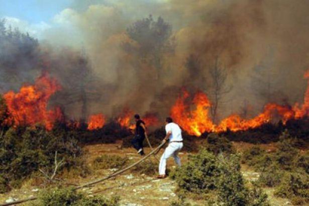 Kemer de orman yangını