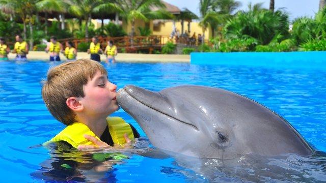 Otistik Çocuklara Yunusla Terapi