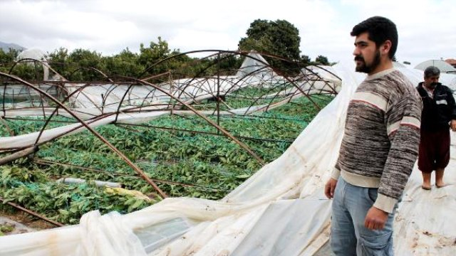 Kumluca'da Rüzgar Seralara Zarar Verdi