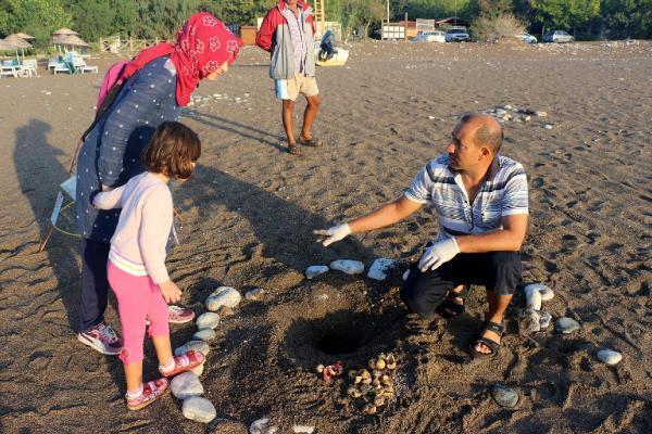 Kemer'de 9 Bin 610 Yavru Caretta Denizle Buluştu