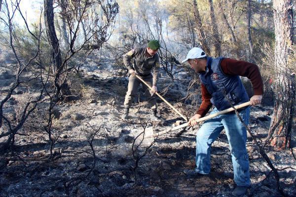 Kemer'de orman yangına topyekun müdahale