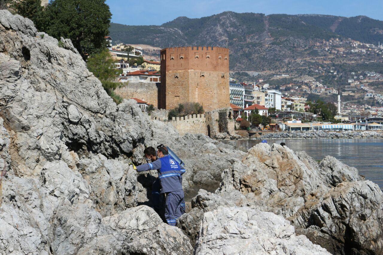 Antalya ve ilçeleri bu yaz rahat edecek