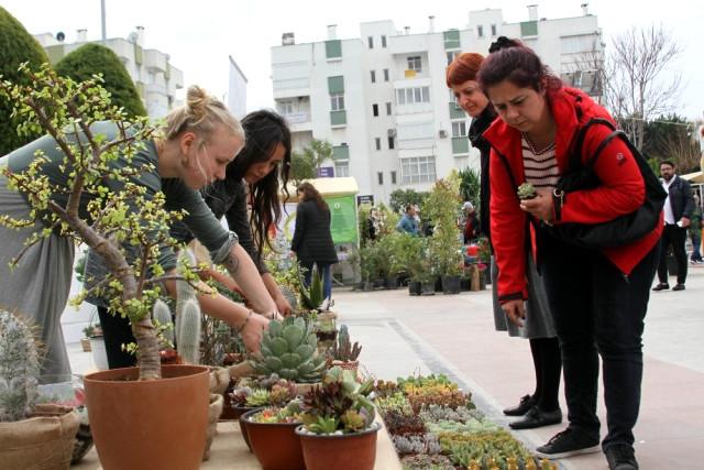 Antalya'da Kent Ağaçları Güzellik Yarışması Düzenlendi