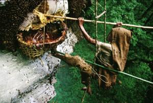 Mağaradan Çıkarılan Peri Balı 5 Bin Avrodan Satılıyor