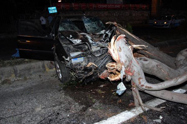 Göynük 'de kaza Ağaca çarpan otomobilde öldü