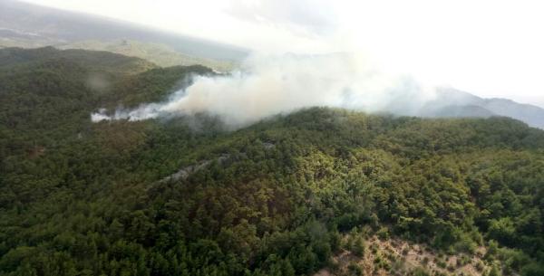 Antalya'da orman yangınında 5 hektar zarar gördü