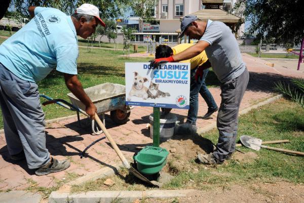Kepez'de hayvanlar susuz kalmıyor