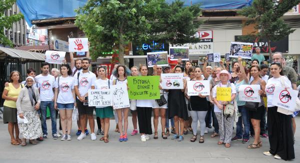 Antalya'da 'faytonlar kaldırılsın' eylemi