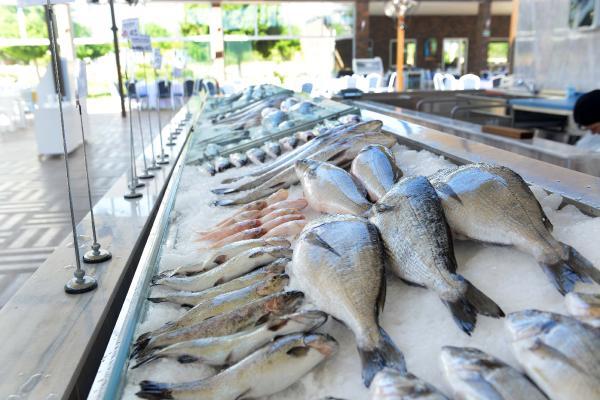 Türkiye'nin en büyük balık çarşısı açılıyor