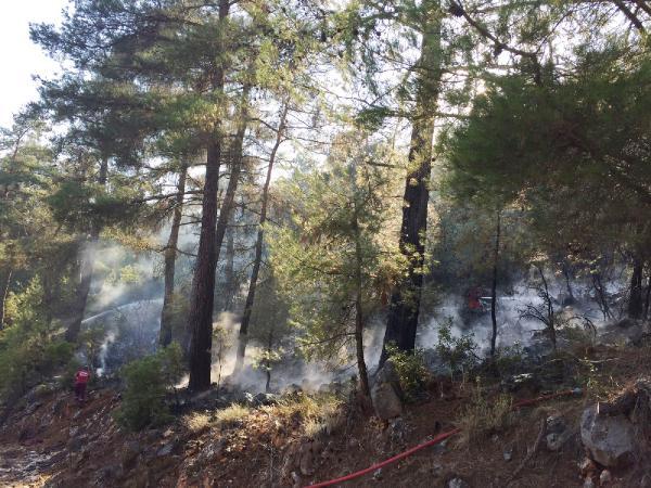 Kemer'de Hızlı müdahale ormanı kurtardı