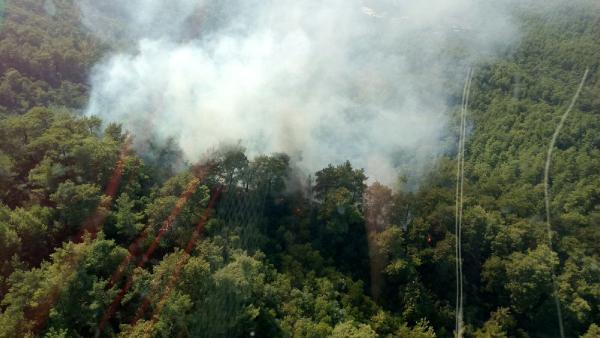 Kemer'de orman yangını (GÖRÜNTÜLÜ)