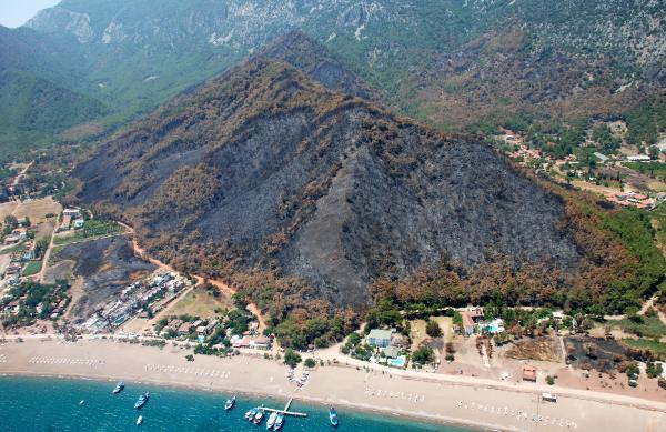 Antalya'da 226 orman yangınında 2 bin hektar zarar gördü