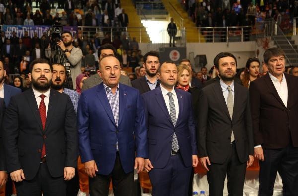 Çavuşoğlu: Avrupa'da Türkiye için Avusturya modeli başladı