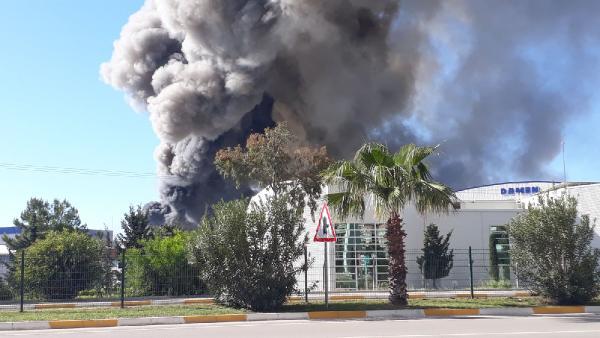 Antalya Serbest Bölge'de yangın (1)