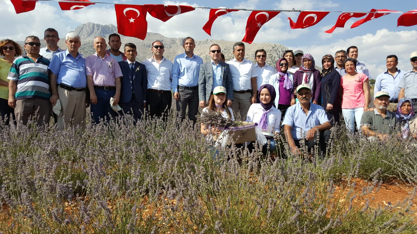 """Elmalı'da """"Lavanta Kokulu Antalya Projesi"""" Meyvelerini verdi"""