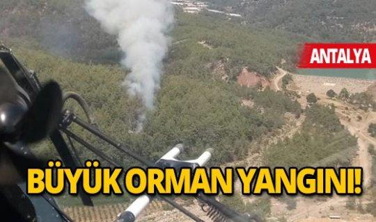Kumluca'da korkutan orman yangını