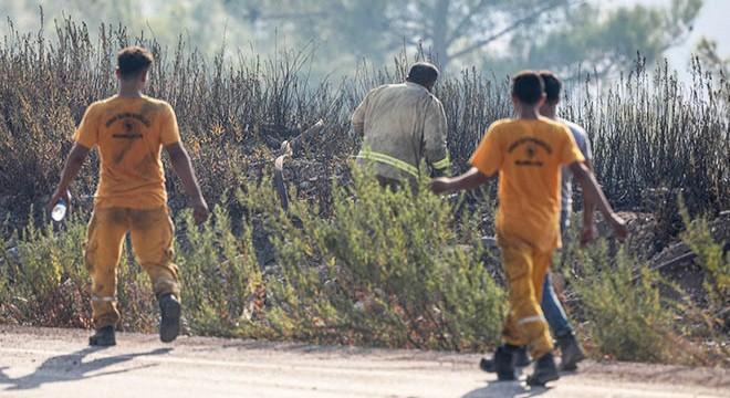 Adrasan'da 60 hektar ormanlık alan küle döndü