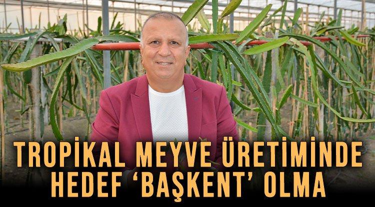 TROPİKAL MEYVE ÜRETİMİNDE HEDEF 'BAŞKENT' OLMA
