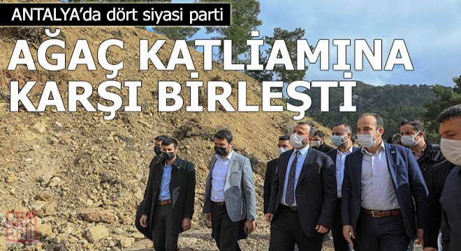 Dört siyasi parti, ağaç katliamına karşı birleşti