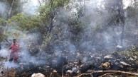 Çıralı'da Korkutan Orman Yangını!