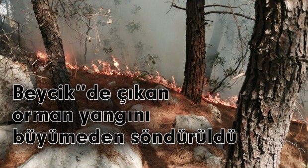 Beycik te  çıkan orman yangını büyümeden söndürüldü